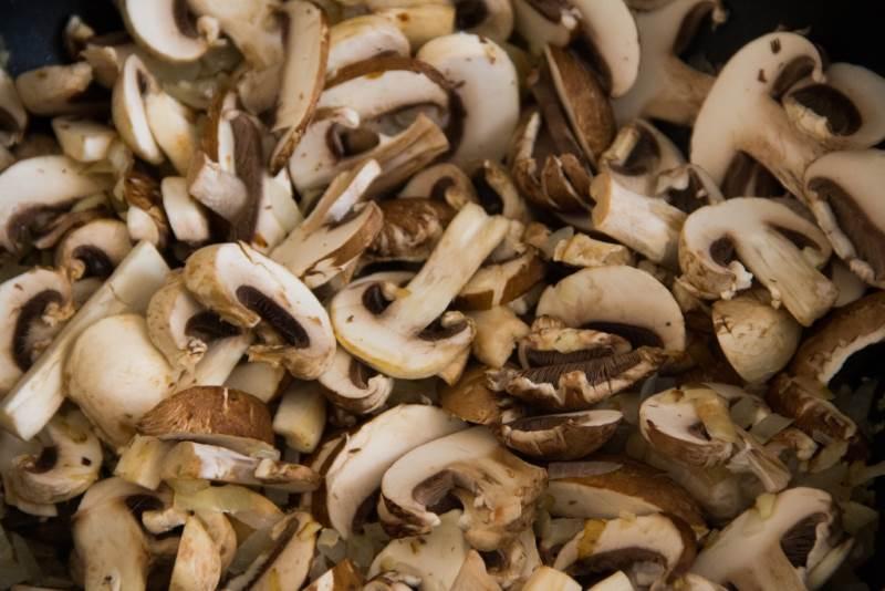 חשוב לשמור על בשרניות הפטריות| צילום:  קארין כהן דבורה